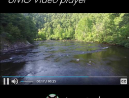 UMG Video Player